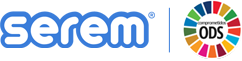 Smart Business Solutions for the Information Technology World | serem